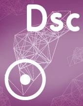 Соединение Солнце- Десцендент, Dsc в синастрии