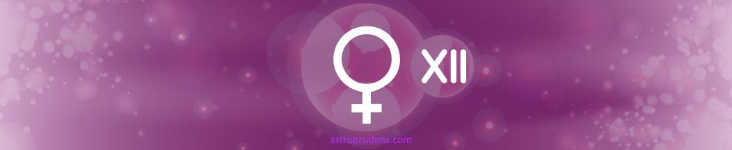 Венера в 12 доме (синастрия)