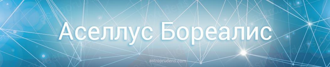 Неподвижная звезда Аселлус Бореалис в астрологии, натальной карте