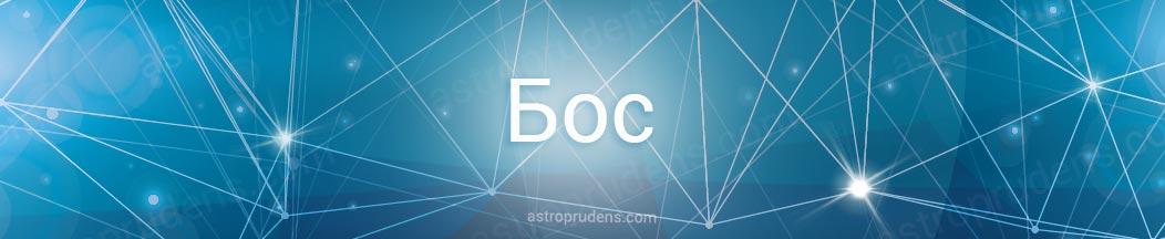 Неподвижная звезда Бос в астрологии, натальной карте